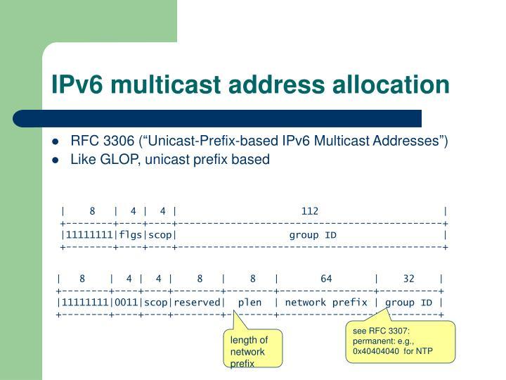 IPv6 multicast address allocation