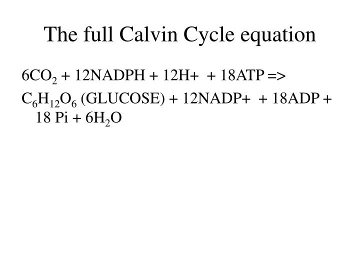 The full Calvin Cycle equation