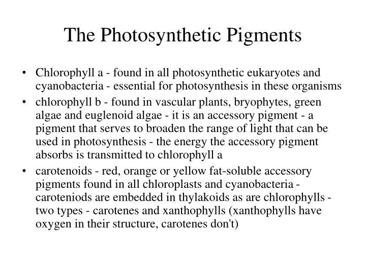 The Photosynthetic Pigments