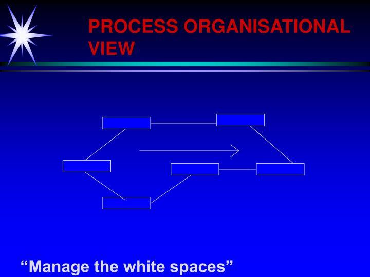 PROCESS ORGANISATIONAL