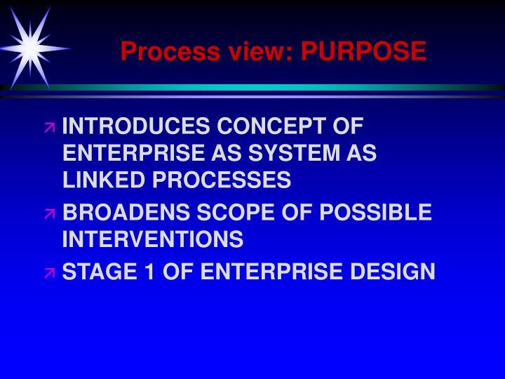 Process view: PURPOSE