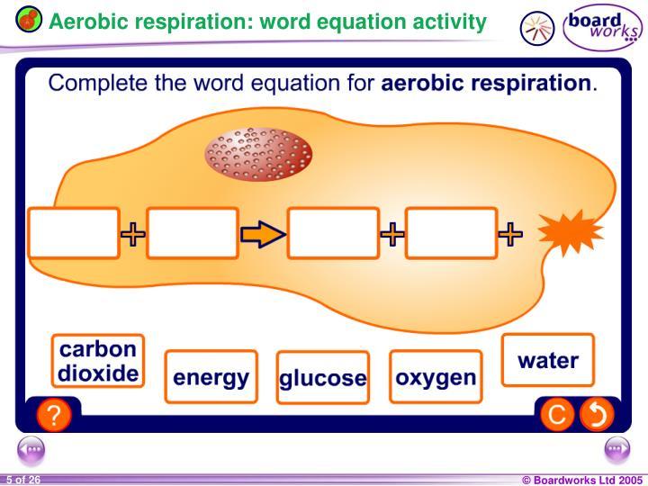 Aerobic respiration: word equation activity