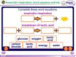 anaerobic respiration word equation activity