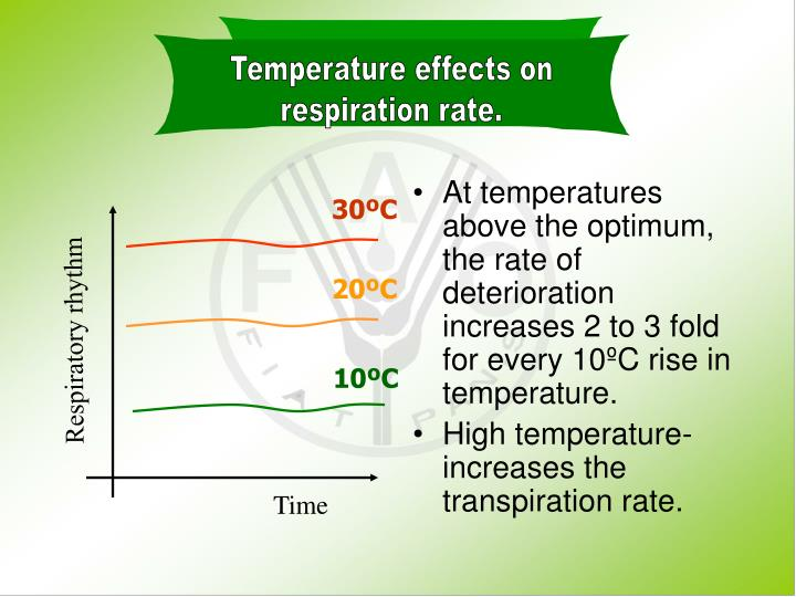 Temperature effects on