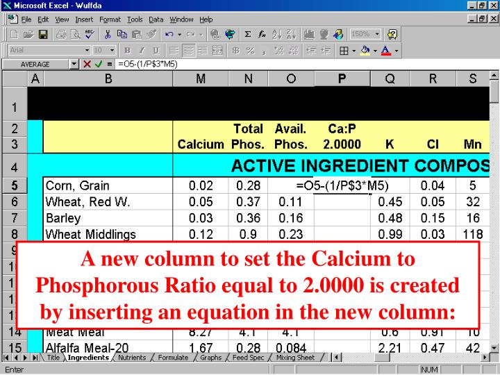 A new column to set the Calcium to Phosphorous Ratio equal to 2.0000 is created by inserting an equation in the new column: