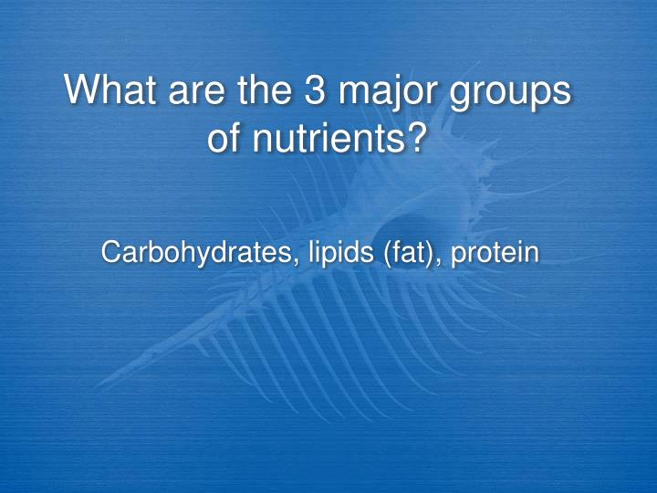 What are the 3 major groups of nutrients?