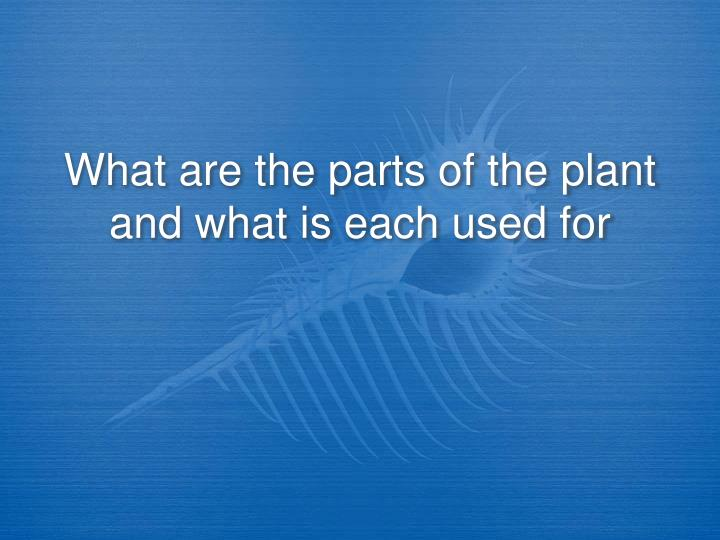 What are the parts of the plant and what is each used for
