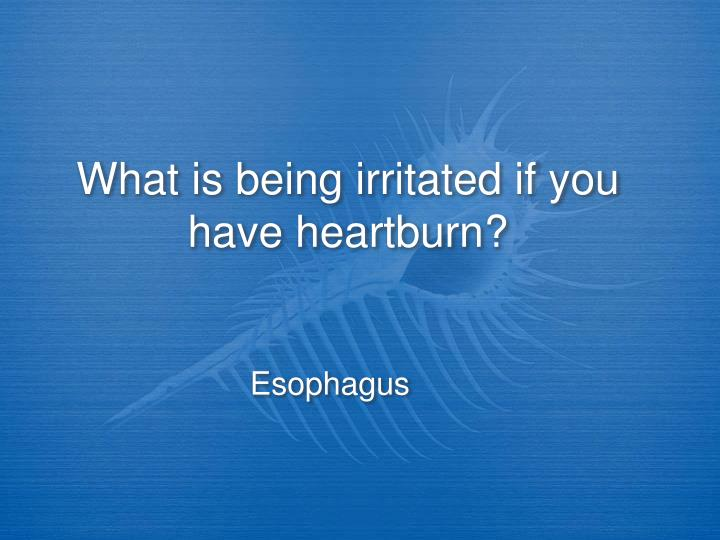 What is being irritated if you have heartburn?