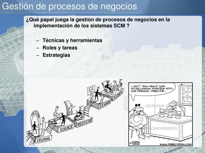 Gestión de procesos de negocios