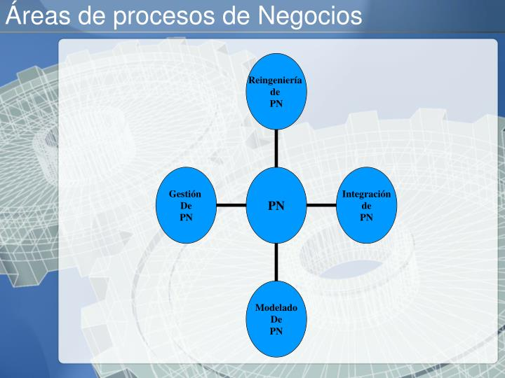 Áreas de procesos de Negocios