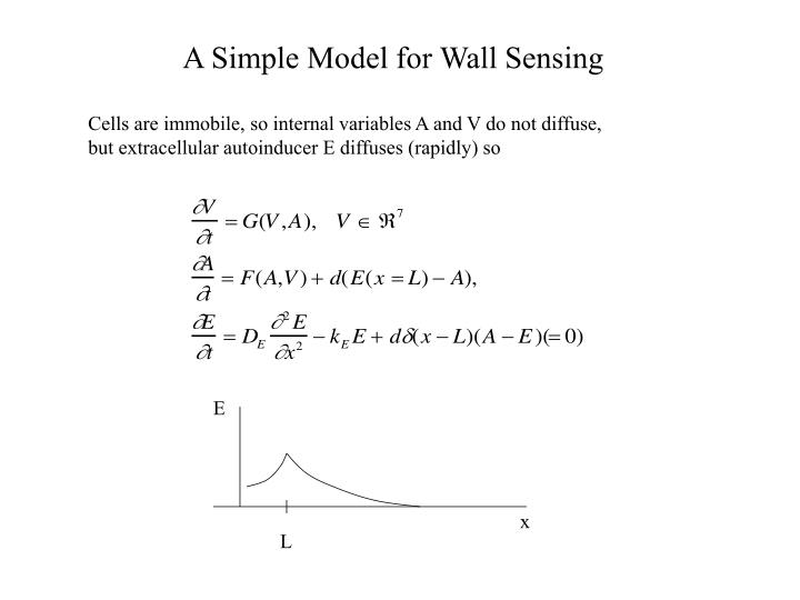 A Simple Model for Wall Sensing