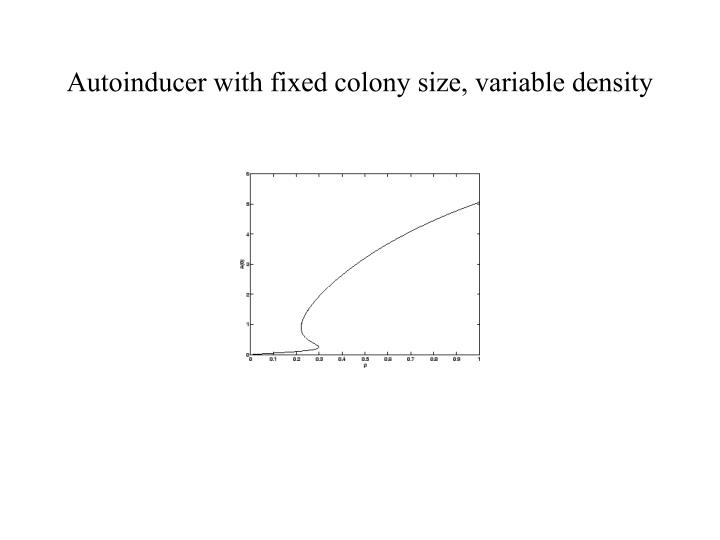 Autoinducer with fixed colony size, variable density