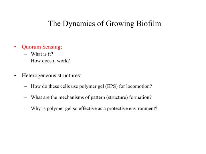 The Dynamics of Growing Biofilm