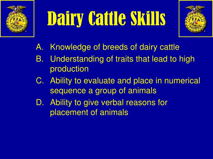 Dairy Cattle Skills