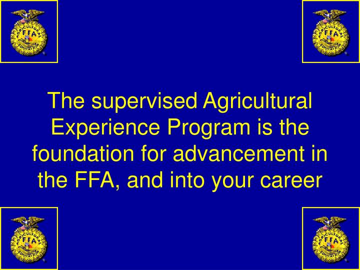 The supervised Agricultural Experience Program is the foundation for advancement in the FFA, and into your career