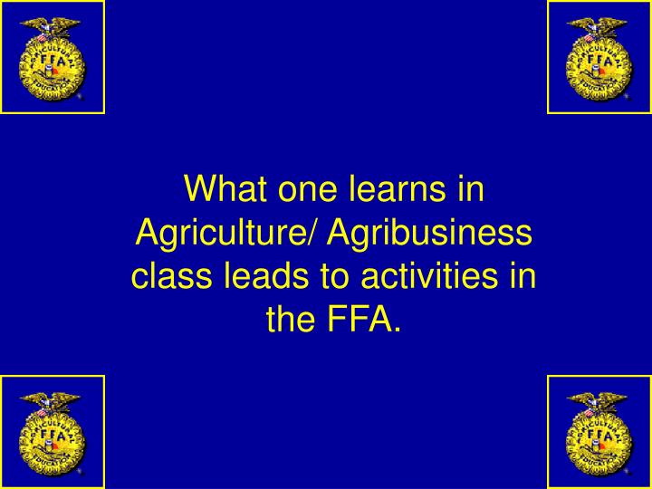 What one learns in Agriculture/ Agribusiness class leads to activities in the FFA.