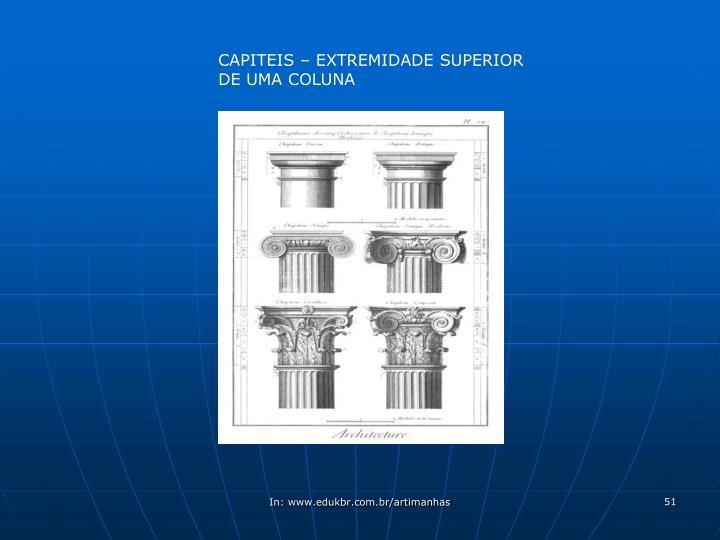 CAPITEIS – EXTREMIDADE SUPERIOR