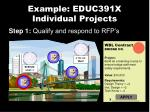 example educ391x individual projects3