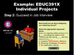 example educ391x individual projects4