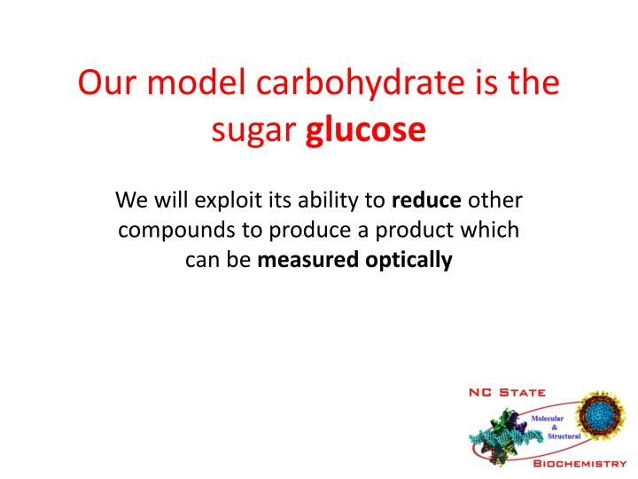 Our model carbohydrate is the sugar