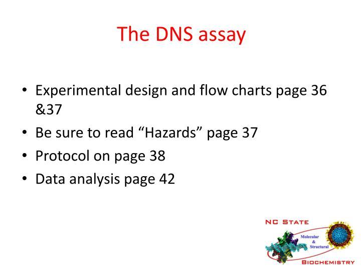 The DNS assay