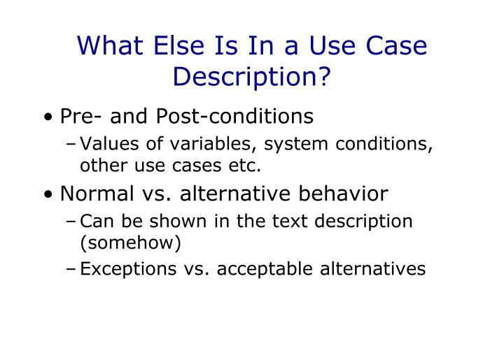 What Else Is In a Use Case Description?