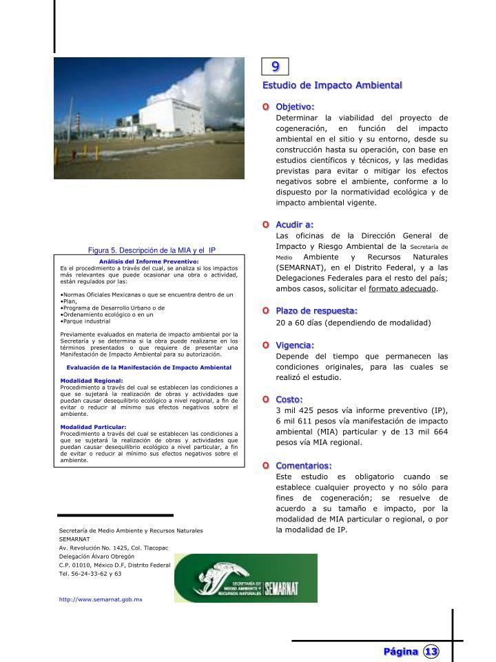 Análisis del Informe Preventivo