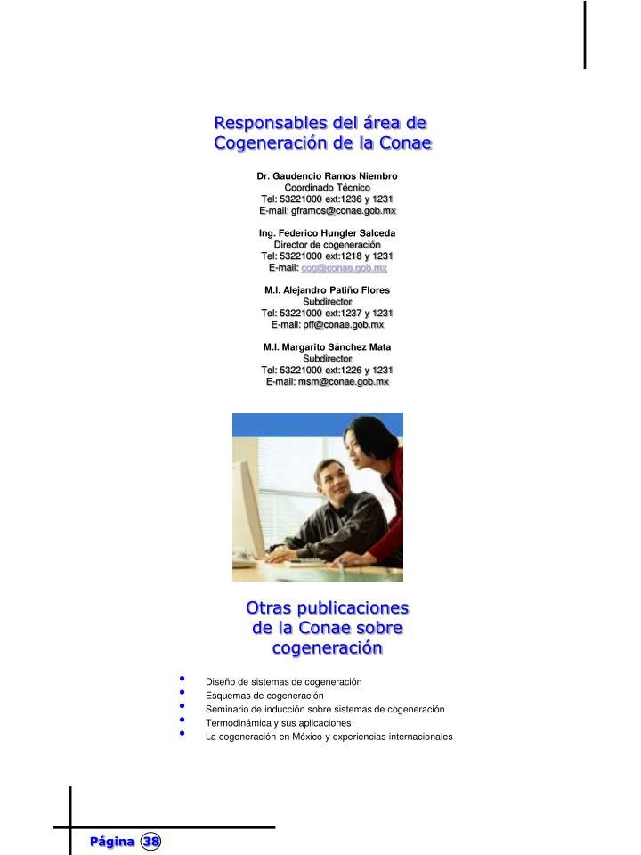 Responsables del área de Cogeneración de la Conae