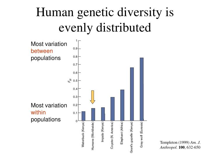 Human genetic diversity is evenly distributed