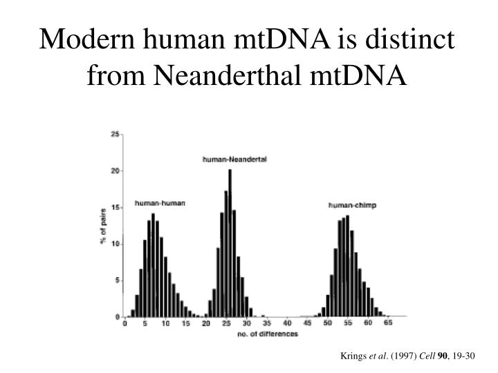 Modern human mtDNA is distinct from Neanderthal mtDNA