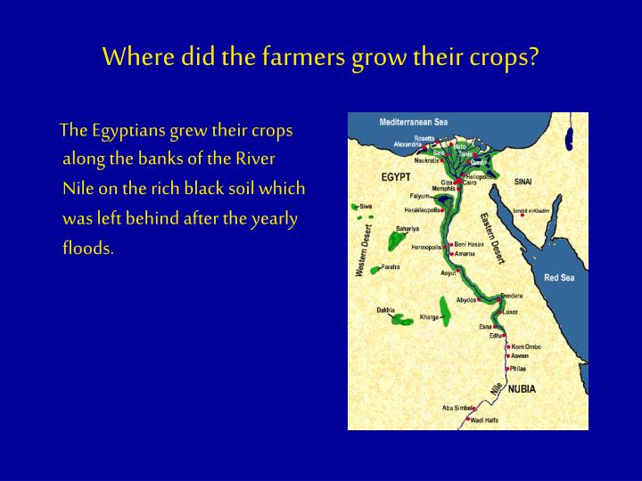 Where did the farmers grow their crops?