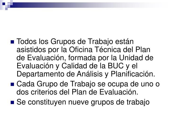 Todos los Grupos de Trabajo están asistidos por la Oficina Técnica del Plan de Evaluación, formada por la Unidad de Evaluación y Calidad de la BUC y el Departamento de Análisis y Planificación.