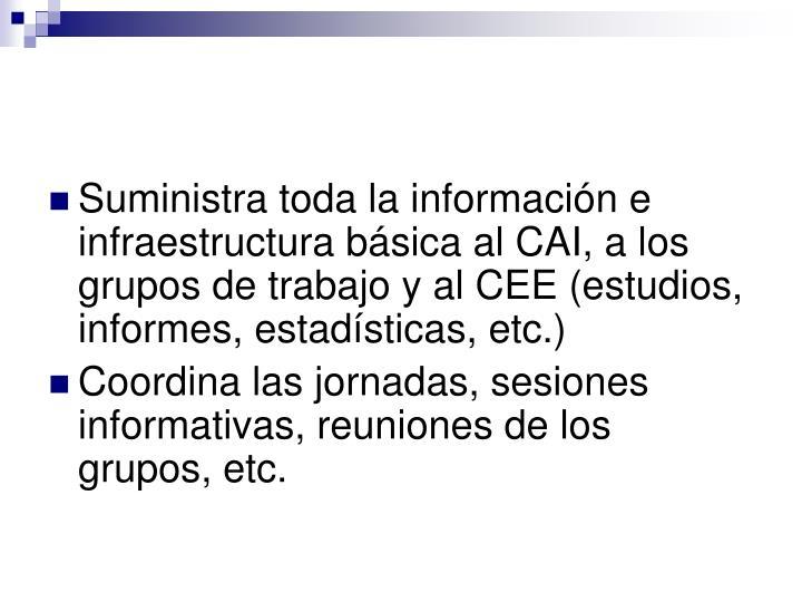 Suministra toda la información e infraestructura básica al CAI, a los grupos de trabajo y al CEE (estudios, informes, estadísticas, etc.)