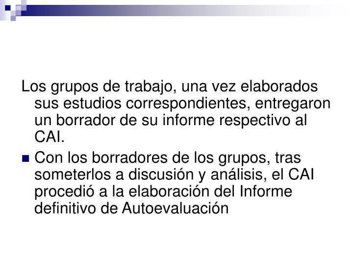 Los grupos de trabajo, una vez elaborados sus estudios correspondientes, entregaron un borrador de su informe respectivo al CAI.