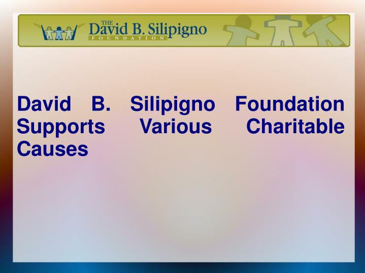 david b silipigno foundation supports various charitable causes