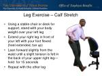 leg exercise calf stretch