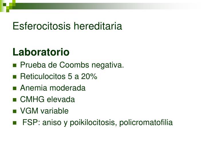 Esferocitosis hereditaria