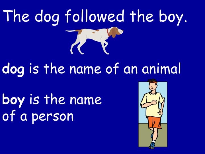 The dog followed the boy.