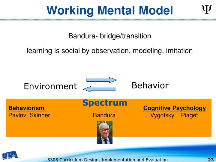 Working Mental Model