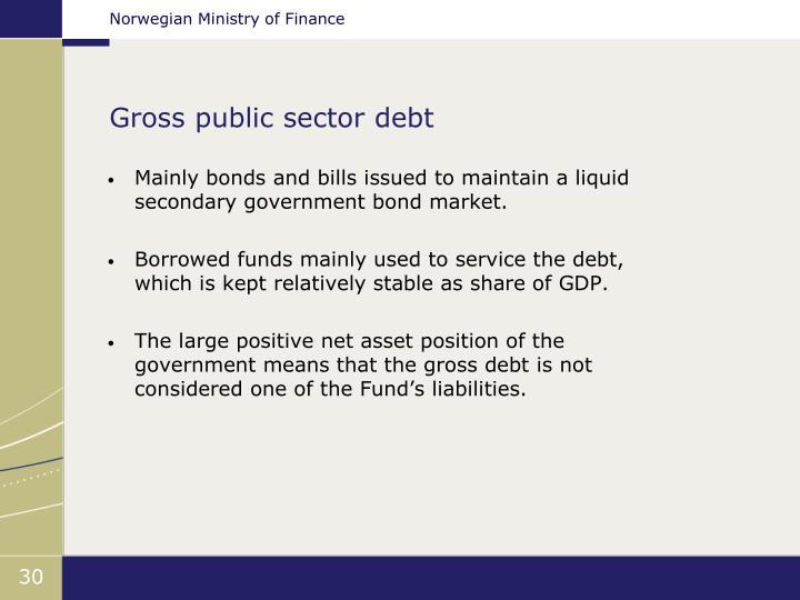 Gross public sector debt