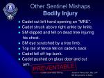 other sentinel mishaps bodily injury