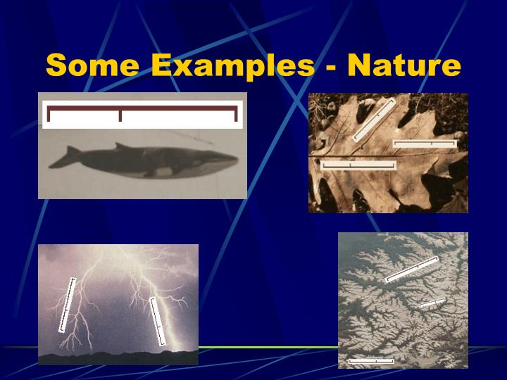 Some Examples - Nature