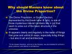 why should masons know about the divine proportion
