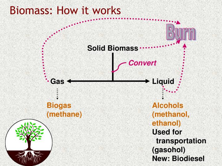 Biomass: How it works