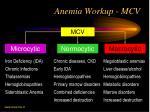 anemia workup mcv