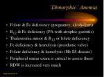 dimorphic anemia