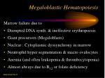 megaloblastic hematopoiesis