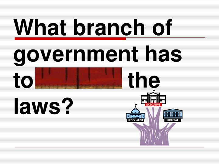 What branch of government has to execute the laws?