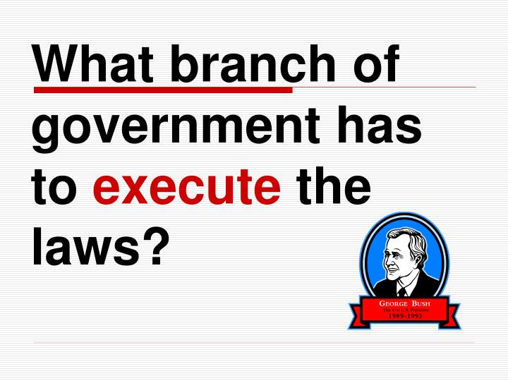 What branch of government has to