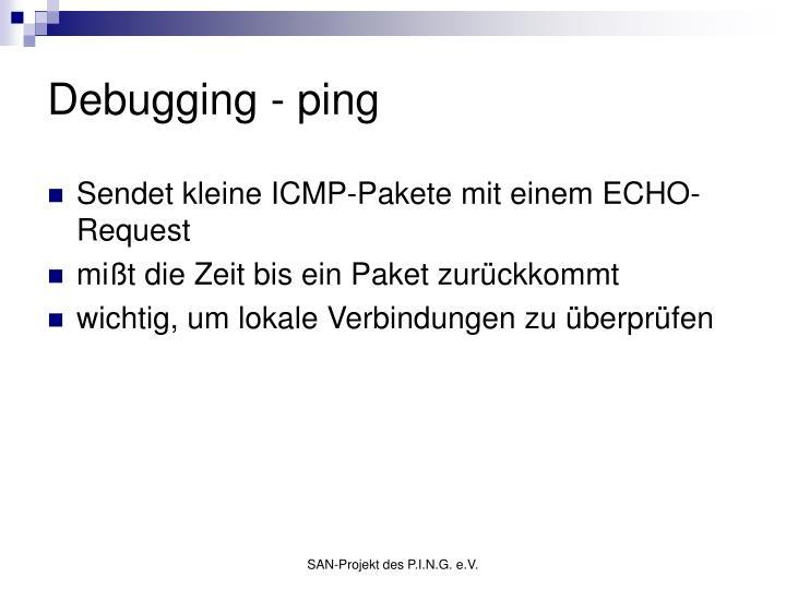 Debugging - ping